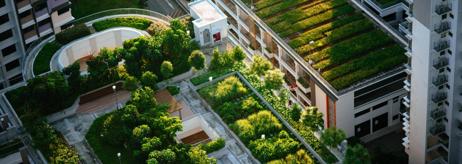 aerial view of buildings with green roofs